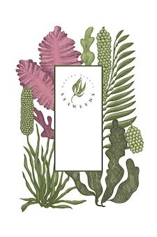 Modello di disegno di colore di alghe. illustrazione di alghe disegnate a mano. banner di frutti di mare stile inciso. sfondo di piante di mare retrò