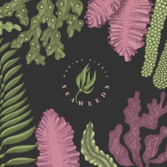 Modello di disegno di colore di alghe.