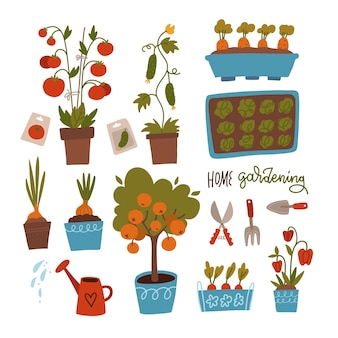 Semi e piantine impostano la germinazione di germogli strumenti pentole e terreno per la raccolta delle piante