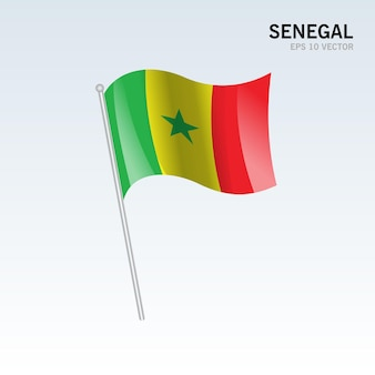Bandiera del senegal sventolante isolata su gray