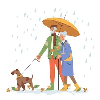 Persone anziane che camminano cane sotto la pioggia con l'ombrello