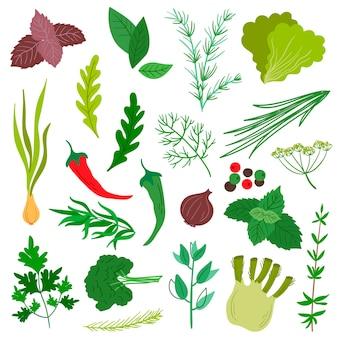Un insieme di erbe aromatiche. stile piatto. basilico, cipolla, menta, rosmarino, salvia, aneto, prezzemolo, ecc.