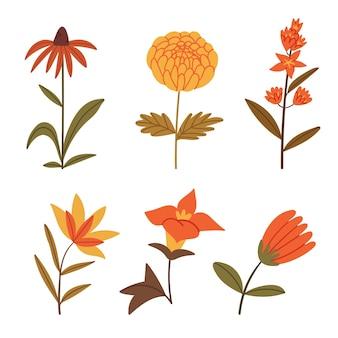 Set di fiori autunnaliillustrazione del libro foresta d'autunnocaduta sul prato