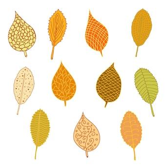 Set di foglie d'autunno. disegnato a mano. brillanti colori autunnali. i diversi modelli. illustrazione vettoriale.