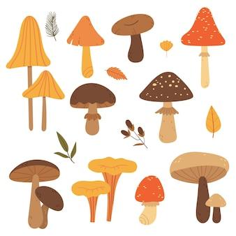 Set di funghi autunnalifauna forestale illustrazione del libro foresta d'autunno