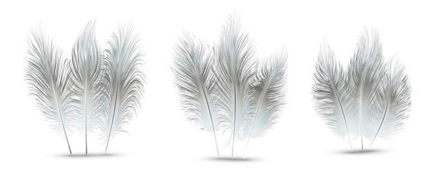 Set di bellissime piume festive isolate su sfondo bianco