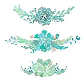 Set di bellissime composizioni floreali con piante grasse isolate su bianco illustrazione vettoriale