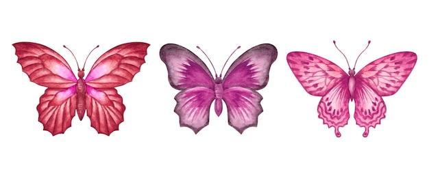 Set di bellissime collezioni di farfalle ad acquerello disegnate a mano