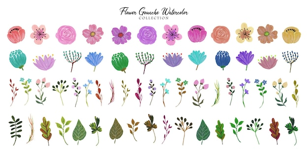 Una serie di bellissimi acquerelli a guazzo di fiori dipinti a mano