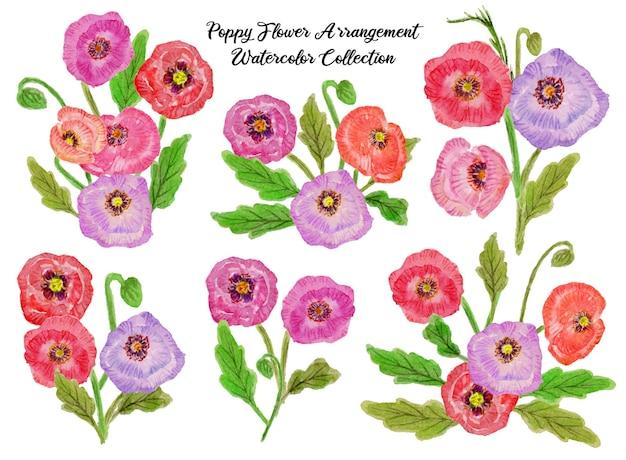 Una serie di bellissimi acquerelli per composizioni floreali di papaveri
