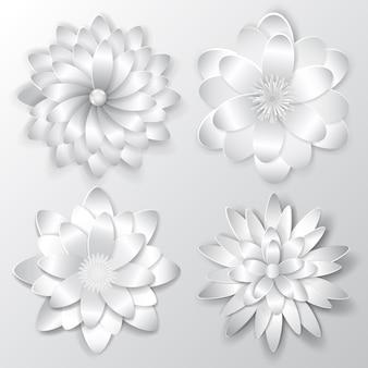 Set di bellissimi fiori di carta di volume con ombre morbide