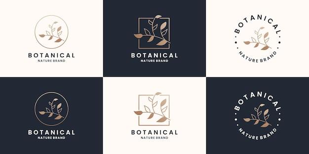 Set di cornice per il design del logo di botanica di bellezza, fiorista, boutique