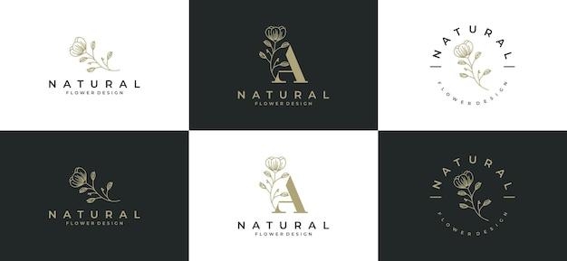 Set di logo cornice foglia di bellezza