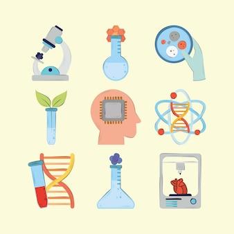 Imposta la scienza della bioingegneria