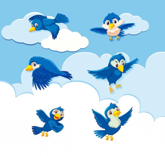 Set di caratteri di uccelli sullo sfondo del cielo