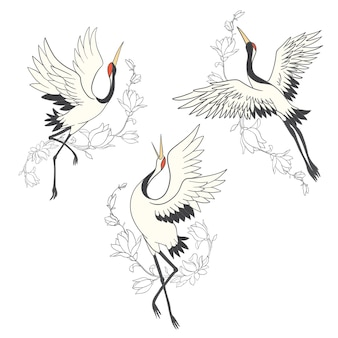 Set di gru di uccelli. cicogna bianca. isolato