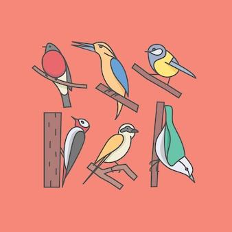 Insieme di uccelli