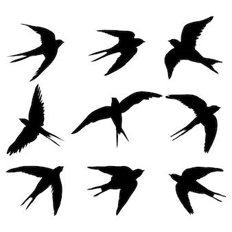 Un insieme di sagome vettoriali isolate nere di una rondine, un uccello su uno sfondo bianco.