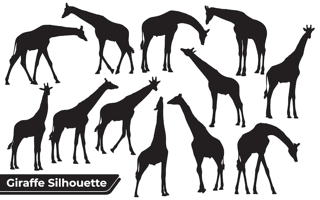 Set di sagome nere di giraffe