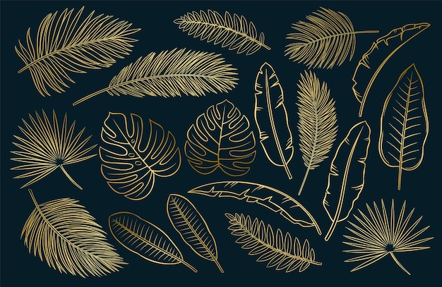 Set di foglie e piume tropicali in bianco e nero impostato su sfondo bianco, illustrazione di contorno di schizzo vettoriale