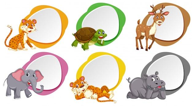 Una serie di banner bianco con animali