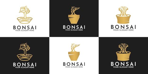Set di disegni del logo dell'albero dei bonsai sui vasi
