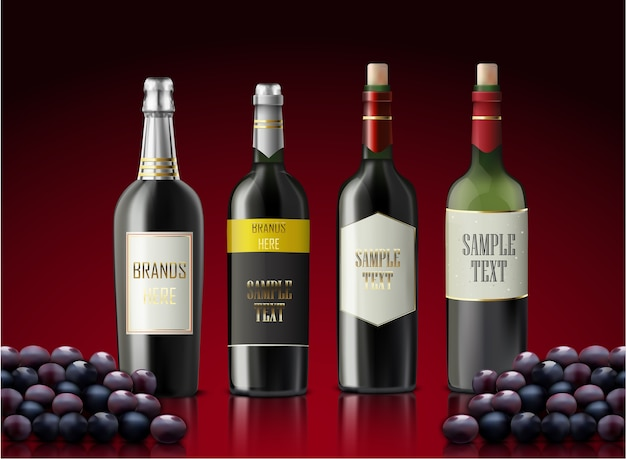 Set di bottiglie di champagne e uva