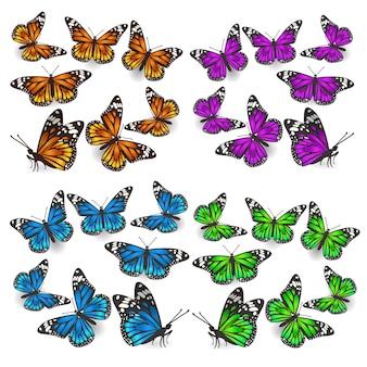 Un insieme di farfalle in diverse angolazioni, diversi colori