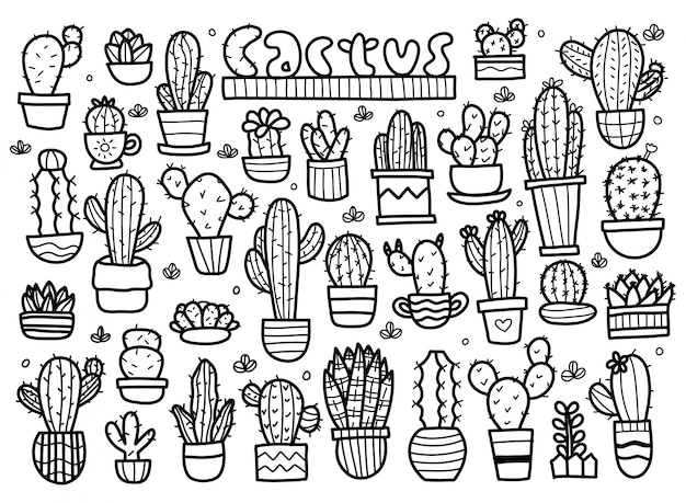 Set di cactus doodle vettore