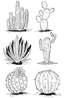 Insieme delle illustrazioni del cactus su fondo bianco. illustrazioni