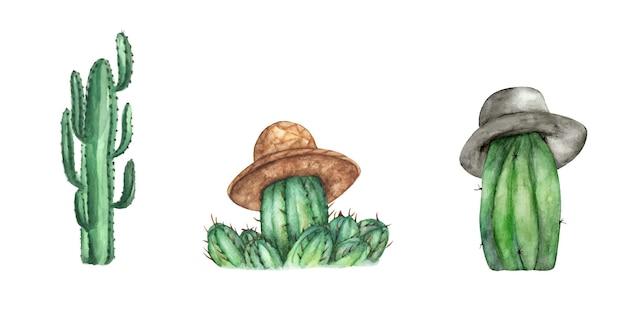 Insieme di cactus. illustrazione dell'acquerello.