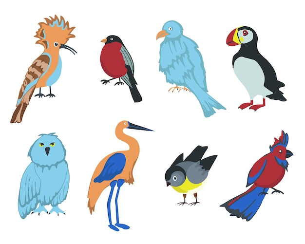 Set di uccelli dei cartoni animati
