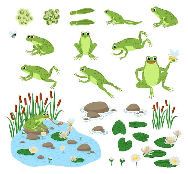 Serie di cartoni animati rana affamata triste, sorriso, riposo e caccia.