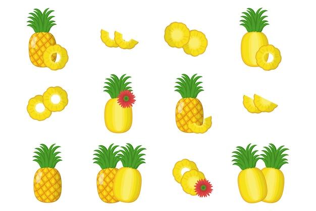 Serie di illustrazioni di cartoni animati con intero, metà, fetta tagliata di frutta esotica di ananas, fiori e foglie isolati su priorità bassa bianca