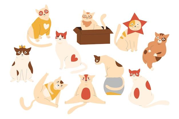 Set di simpatici personaggi cat pet