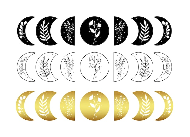 Set di illustrazione della fase lunare celeste con foglia floreale