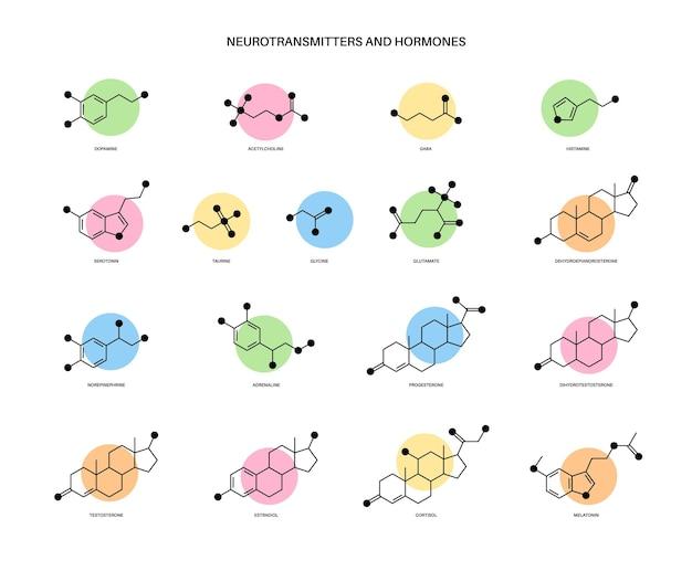 Set di formule chimiche di ormoni umani e neurotrasmettitori nell'illustrazione vettoriale del cervello