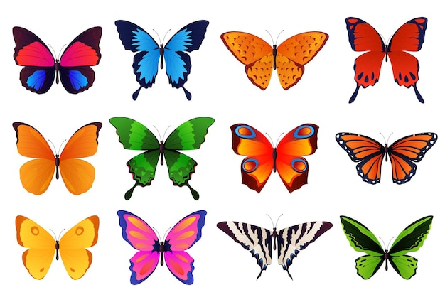 Set di farfalle colorate e bellissime. illustrazione vettoriale