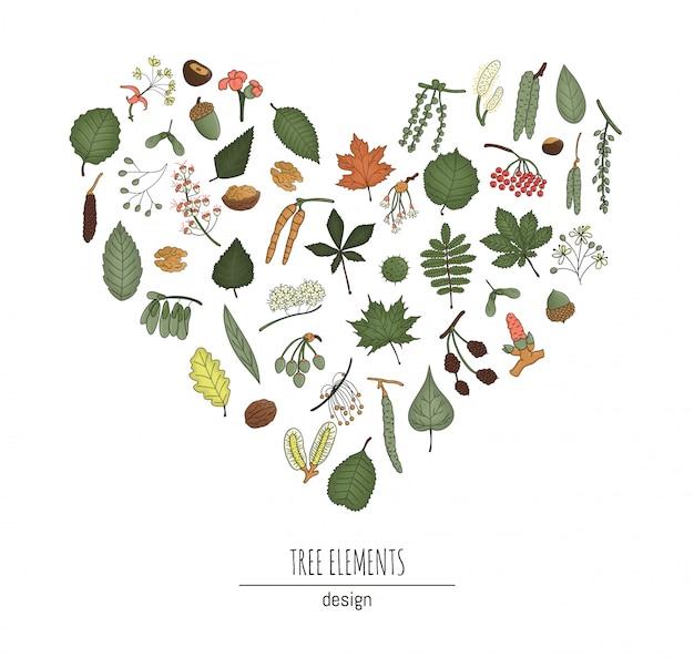 Insieme di elementi di albero colorato isolato su sfondo bianco incorniciato a forma di cuore. confezione colorata di foglie di betulla, acero, quercia, sorbo, pioppo, salice, noce, frassino. concetto di foresta in stile cartone animato Vettore Premium