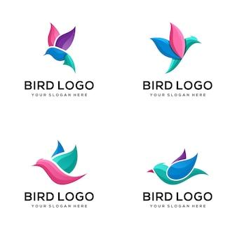 Set di modello di logo uccello colorato