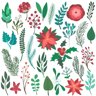 Set di coloratissimi elementi floreali di natale fiori invernali rami bacche