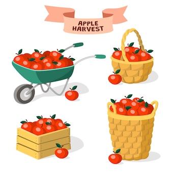 Set di contenitori per mele. raccolta delle mele. carriola da giardino, cassetta di legno, cestini di mele.