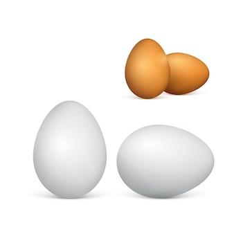 Set di coppia uova bianche e marroni. uova di gallina realistiche. illustrazione su sfondo bianco