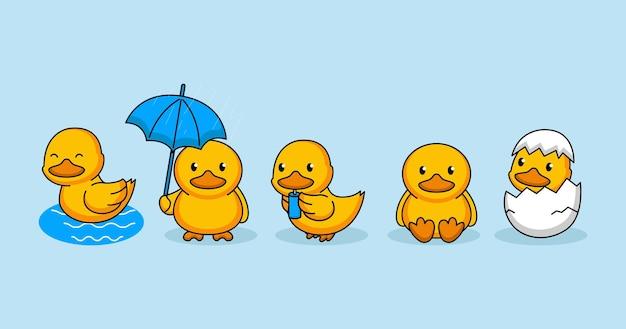 Set di simpatiche anatre, sedersi, uova, piovere, nuotare