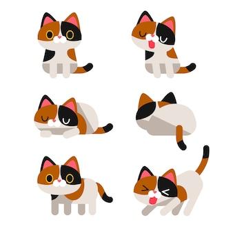 Set di simpatici personaggi di gatto calico in diverse pose azione isolata