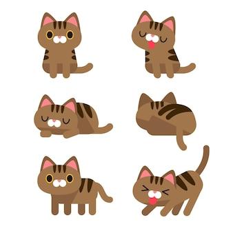 Set di gatto carino in diverse pose azione isolato su sfondo bianco.