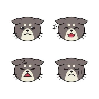 Set di facce di gatto carino che mostrano emozioni diverse