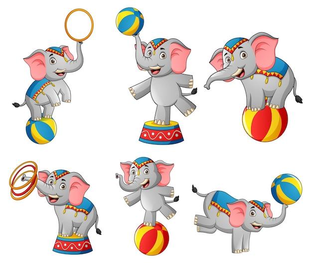 Set di carino circo elefante cartoon illustrazione