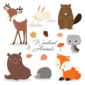 Insieme dell'illustrazione sveglia degli animali del terreno boscoso