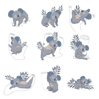Set di simpatici koala su eucalipti e rami. animale marsupiale australiano. simpatiche creature selvagge